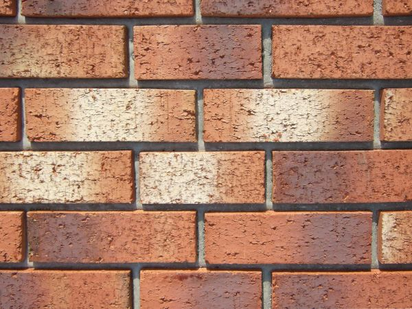 Cedar Buff brick cladding